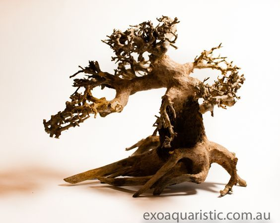 Find fish tank decorations and fish tank accessories at an enticing price range at exoaquaristic.com.au. Visit:   http://www.exoaquaristic.com.au/collections/driftwood-for-sale