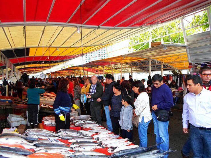 """""""Feria Fluvial""""  Valdivia, Chile"""