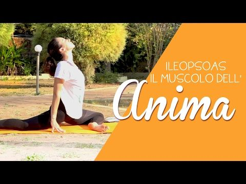 Yoga - Ileopsoas, il muscolo dell'Anima - YouTube
