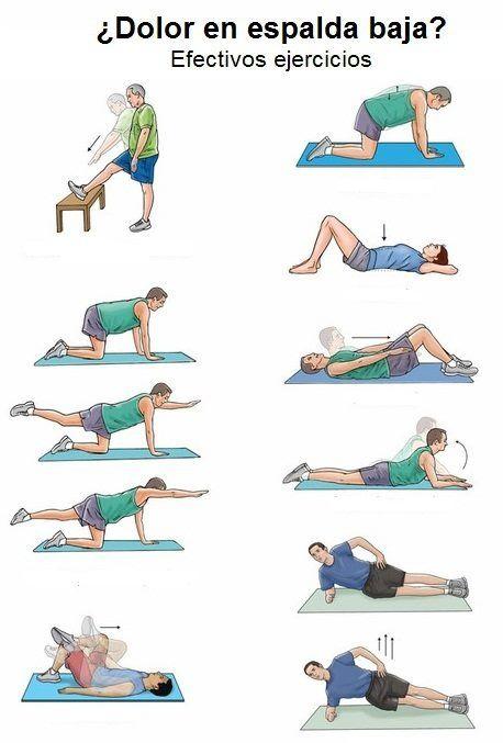 estiramientos ideales para evitar el dolor en la zona lumbar #fisioterapia  logarsalud.com