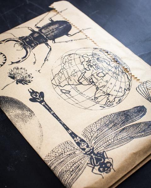 Anatomy Vintage XL Sketchbook - Cognitive Surplus - 8