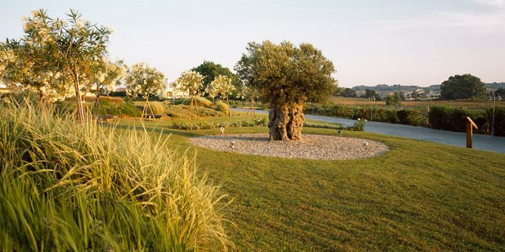 Neptune Hotels - Resort  Landscape Design: Greenways - Karolos Chanikian www.greenwayshellas.gr
