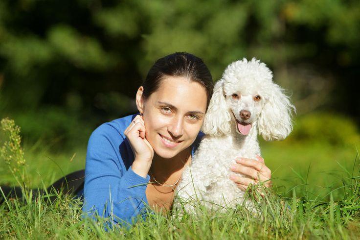 Sie haben eine Hundeallergie? Wir stellen Ihnen fünf Hunde für Allergiker vor und erklären, was Sie bei der Anschaffung beachten müssen.