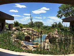 Review of Sabi Sabi Game Reserve + Chef Eric Chavot : South Africa