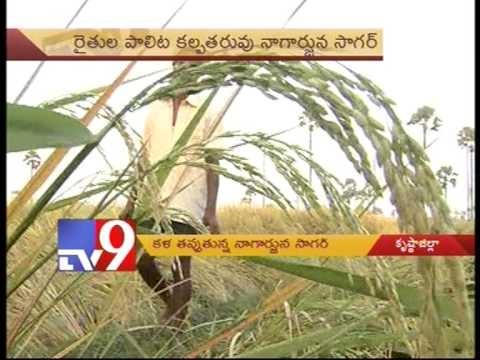 Tv9 Special focus on Nagarjuna Sagar Dam