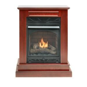 Ventless Gas Freestanding Fireplaces Compact Parlor Fireplaces Vent Free Heaters And