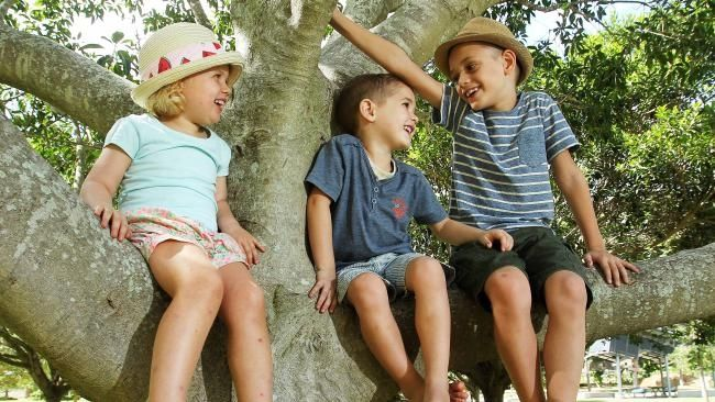 Optometrists warn myopia a 'looming epidemic' for screen-addicted children - Nature Play QLD  #NaturePlayQLD #CourierMail