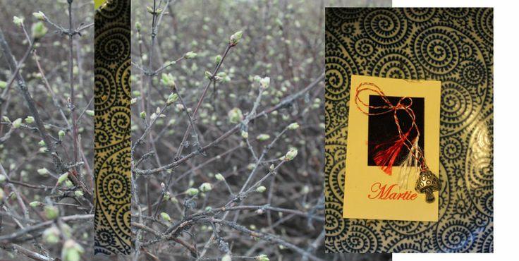 Une image d'un jour 3/5 (mardi). Mărțișor. Une amie de moi m'a énvoyé ce bijou il y a deux moins et m'a raconté une jolie histoire. En Roumanie on fait la fête du 1er mars, qui symbolise l'arrive du printemps. Les gens portent des 'Mărțișors' à la poitrine, en général, qusqu'au moment où on voit le premier arbre en fleur. Ce jour est arrivé à Jyväskylä en cette semaine.