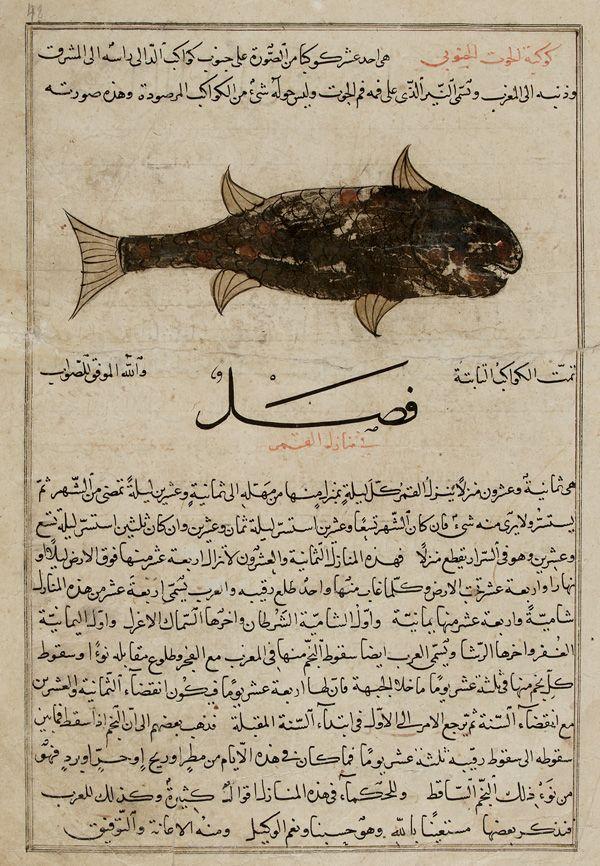 Folio from a Aja'ib al-makhluqat (Wonders of Creation) by al-Qazvini  early 15th century. Possibly Baghdad, Iraq or Eastern Turkey