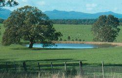 Beautiful farm dams...