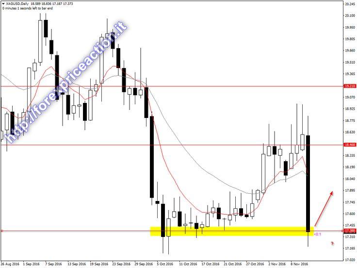 Binare option trader