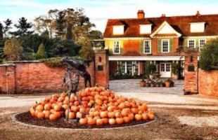 Tastes of The Forest at top New Forest hotel, Chewton Glen ¦ Headline Events | New Forest Food Fest 2016