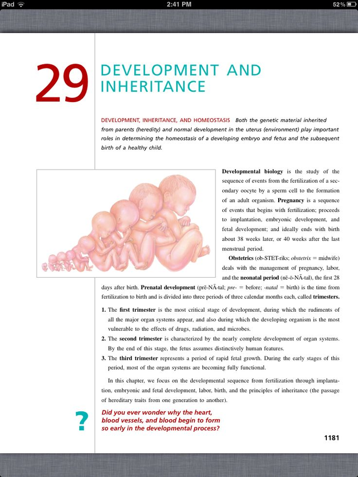 43 best Chapter 29, Development and Inheritance images on Pinterest ...