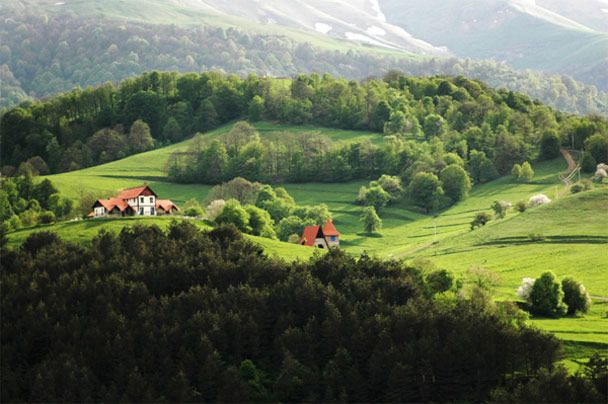 Is it your dream to buy land for a self-sufficient homestead? Here are some things to consider…
