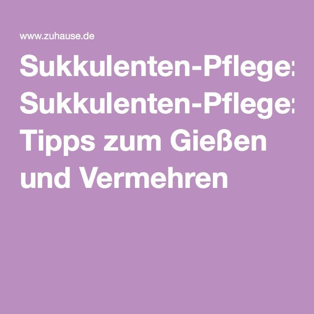 17 Best Ideas About Sukkulenten Pflege On Pinterest | Jade ... Sukkulenten Arten Namen Arrangement