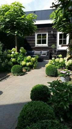 Image result for oude waaltjes tuinpad