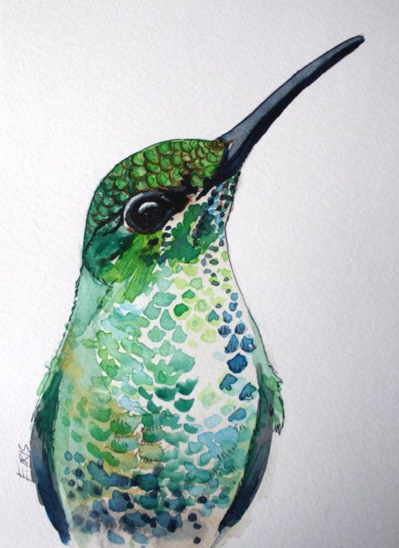 "Hummingbird, Green-crowned Brilliant , 5"" x 7"", Watercolor, ink and colored pencil.  Erica Iris Art"