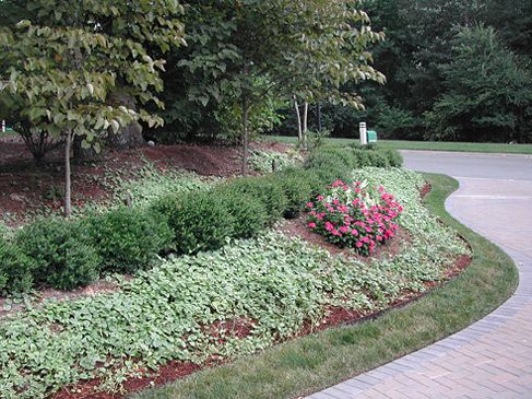 49 best images about front yard slope on pinterest for Garden designs for slopes