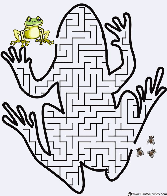 Leap Year Frog Party Game Maze From Print Activities Kids LOVE Doing Mazes