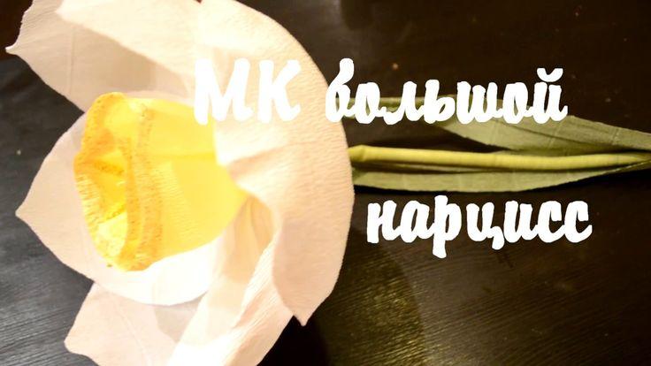 мк большой цветок, нарцисс