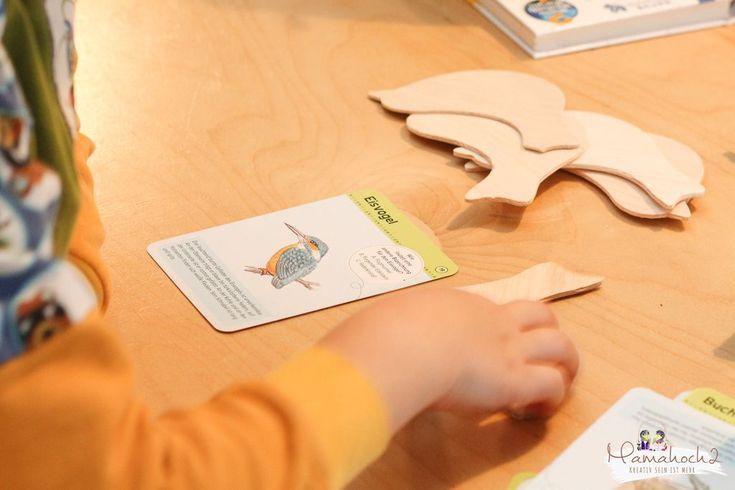 heimische vogelarten kinder lernene diy vögel bestimmen naturdetektive (7)