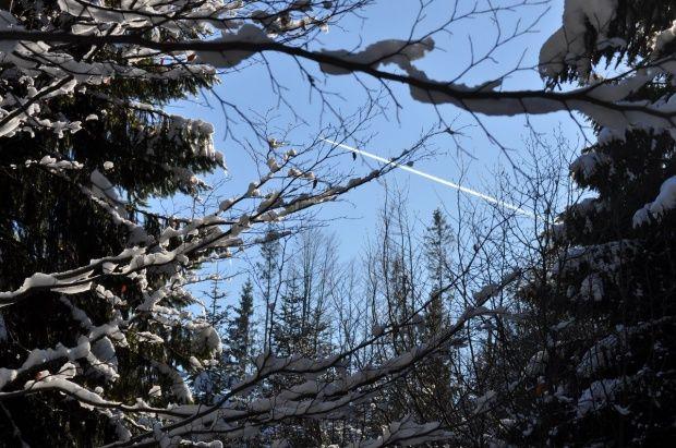 Kamesznica - Beskid Śląski. Zima w górach.