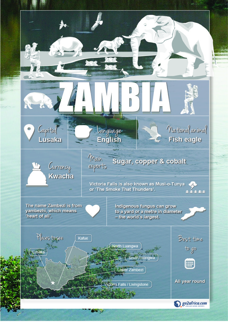 Zambia Country Information infographic. #Africa #Travel