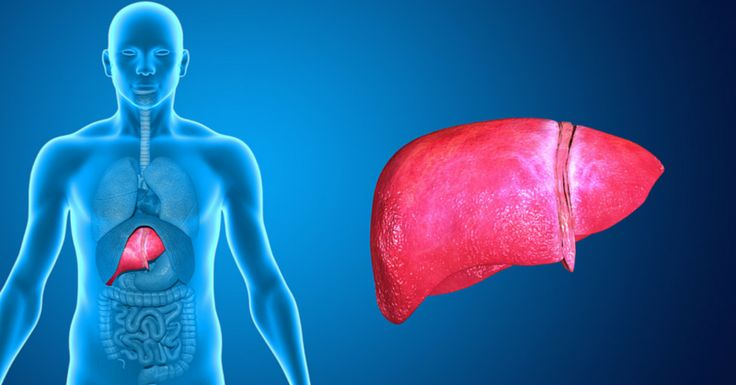 When the liver is taxed, it can't process toxins and fat in an efficient way.