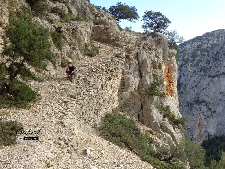 Percorso dei carbonai (Baunei, Sardegna)