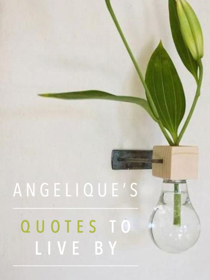 quotes-to-live-by