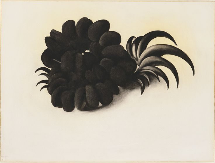 Georgia O'Keeffe Eagle Claw and Bean Necklace (1934)