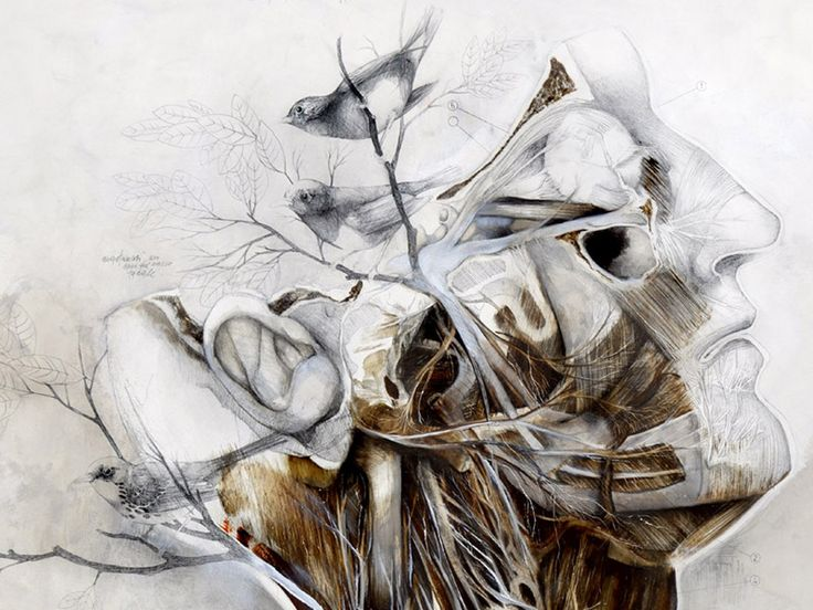 Nunzio Pacis Graphite and Oil Paintings Merge Nature and Anatomy