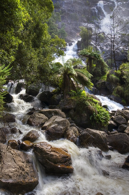 st columba falls - #tasmania