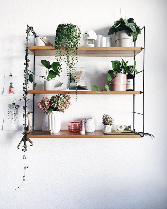 Pflanzenliebe paulsvera | DIY | Interieur | Design Plantgang versammelte sich auf der