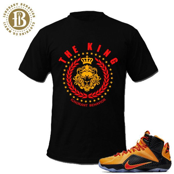 26 best lebron james matching tees shirt images on