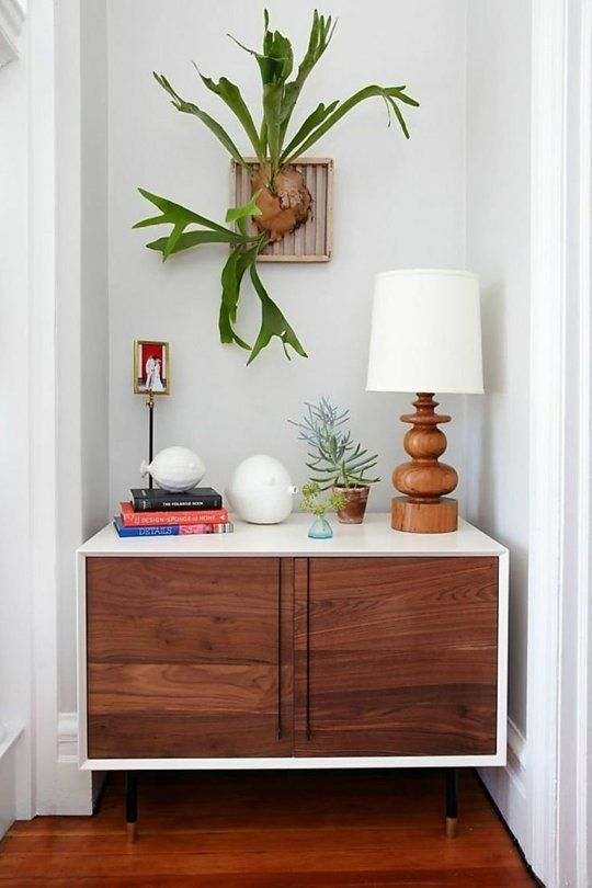 """Swap Your Fig Plant For Staghorn Ferns - """"There's no denying the fiddle-leaf fig is the most Instagrammable houseplant of 2015. Next year I'm putting all my money on staghorn ferns!"""""""