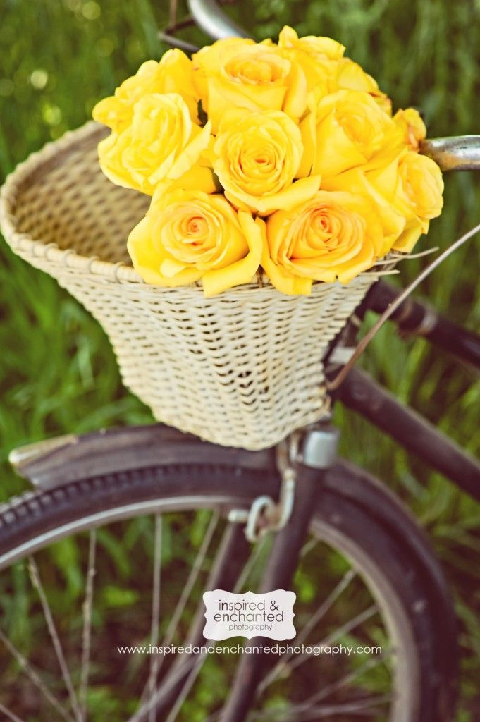 don't yellow roses just make you smile......they do me and always will......