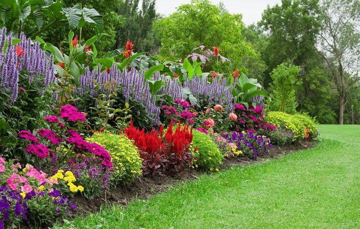 Practical ways to stretch your dollar when growing an organic flower garden.