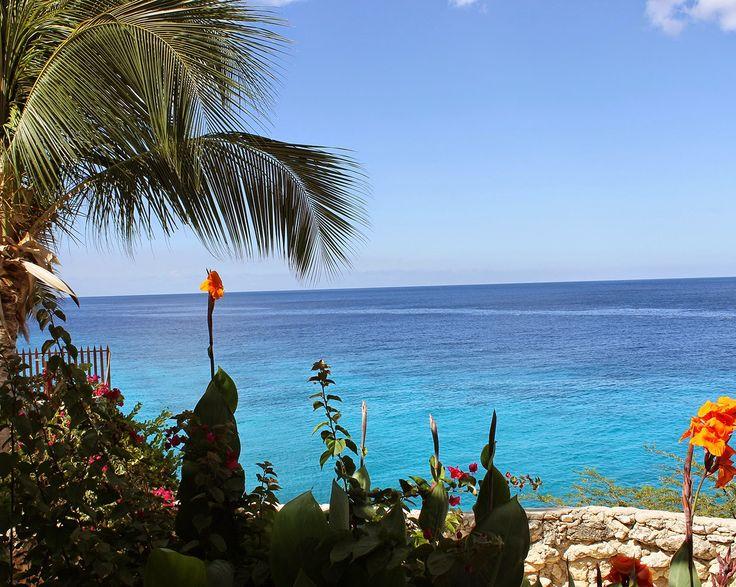 Curacao in photos #travel #curacao #visitCuracao #trip
