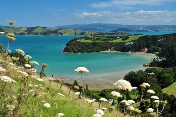 View of Cowes Bay, Waiheke Island, Auckland. Photo by Estelle Tahiti