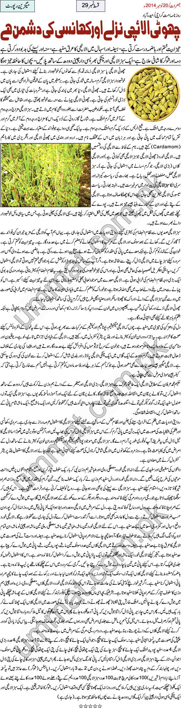 Daily Publications | Daily Ummat Karachi provides latest news in urdu language.
