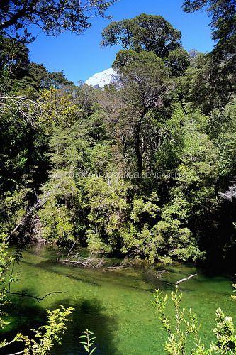 Aguas puras - Valle de Cochamo (Patagonia - Chile)