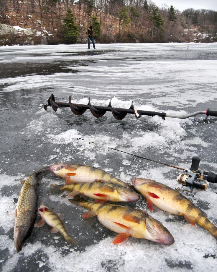 ice fishing gear.