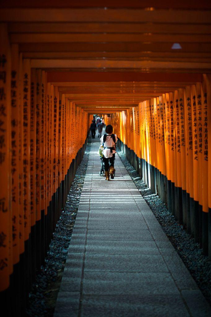 Torii gates of Fushimi Inari shrine, Kyoto, Japan. So incredible walk in the mountain..