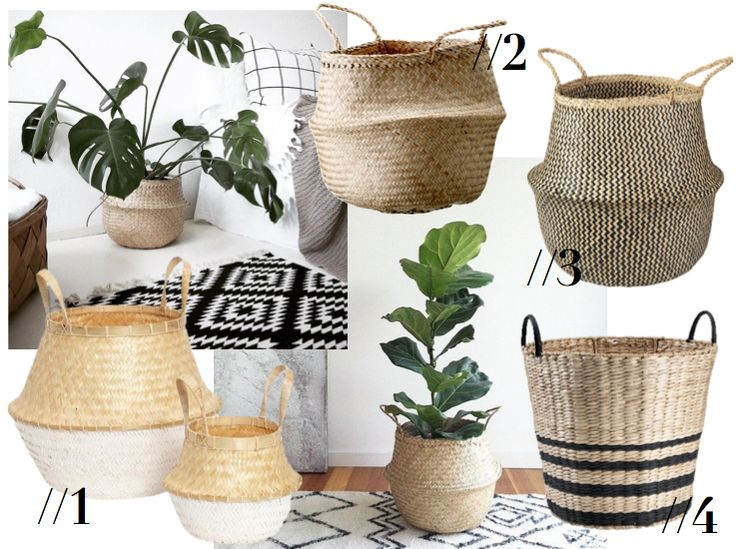 BASKETS FOR YOURS PLANTS                                                                                                                                                                                 More