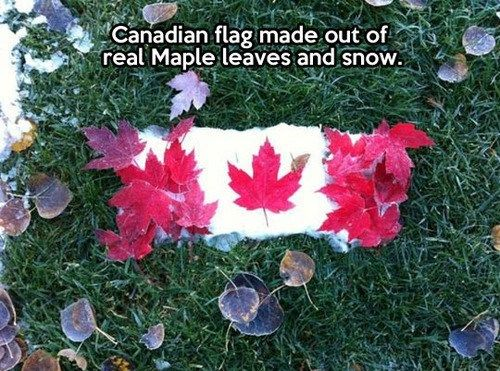 Canada: Too Cold to Leaf