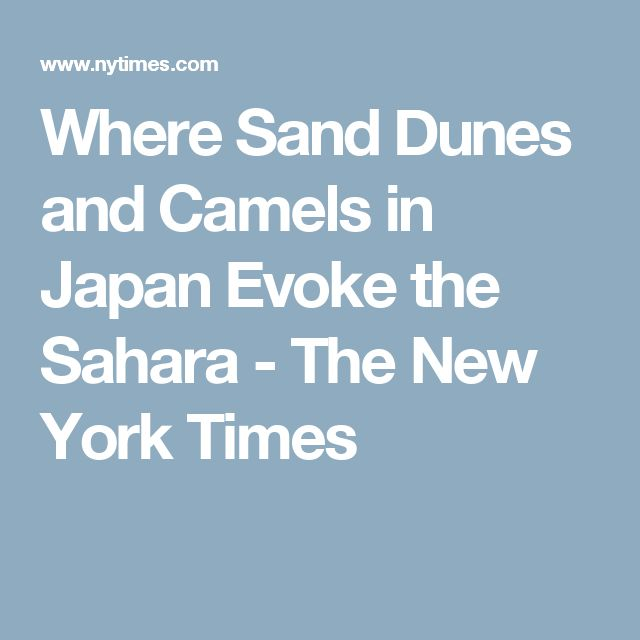 Where Sand Dunes and Camels in Japan Evoke the Sahara - The New York Times