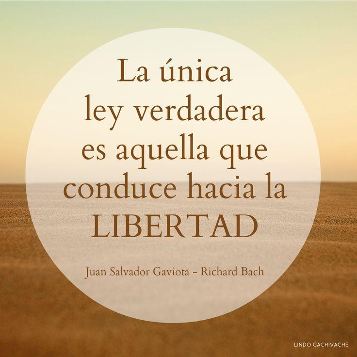 La única ley verdadera es aquella que conduce hacia la libertad  Juan Salvador Gaviota - Richard Bach