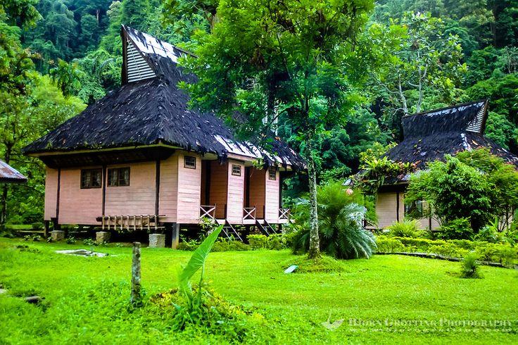 Indonesia, Sumatra. Bukit Lawang. Gunung Leuser National Park, © Bjorn Grotting