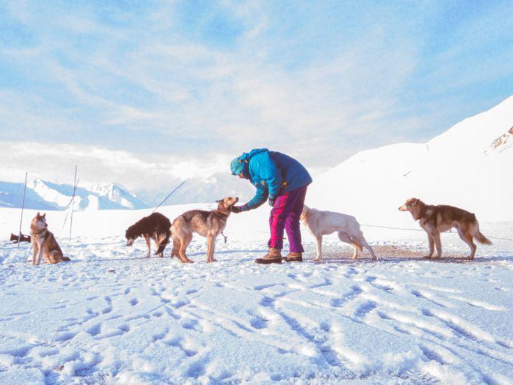 Un anónimo hombre del Yukon | Perros de trineo | Viajeros del Ártico